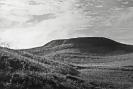 Liesenų piliakalnis